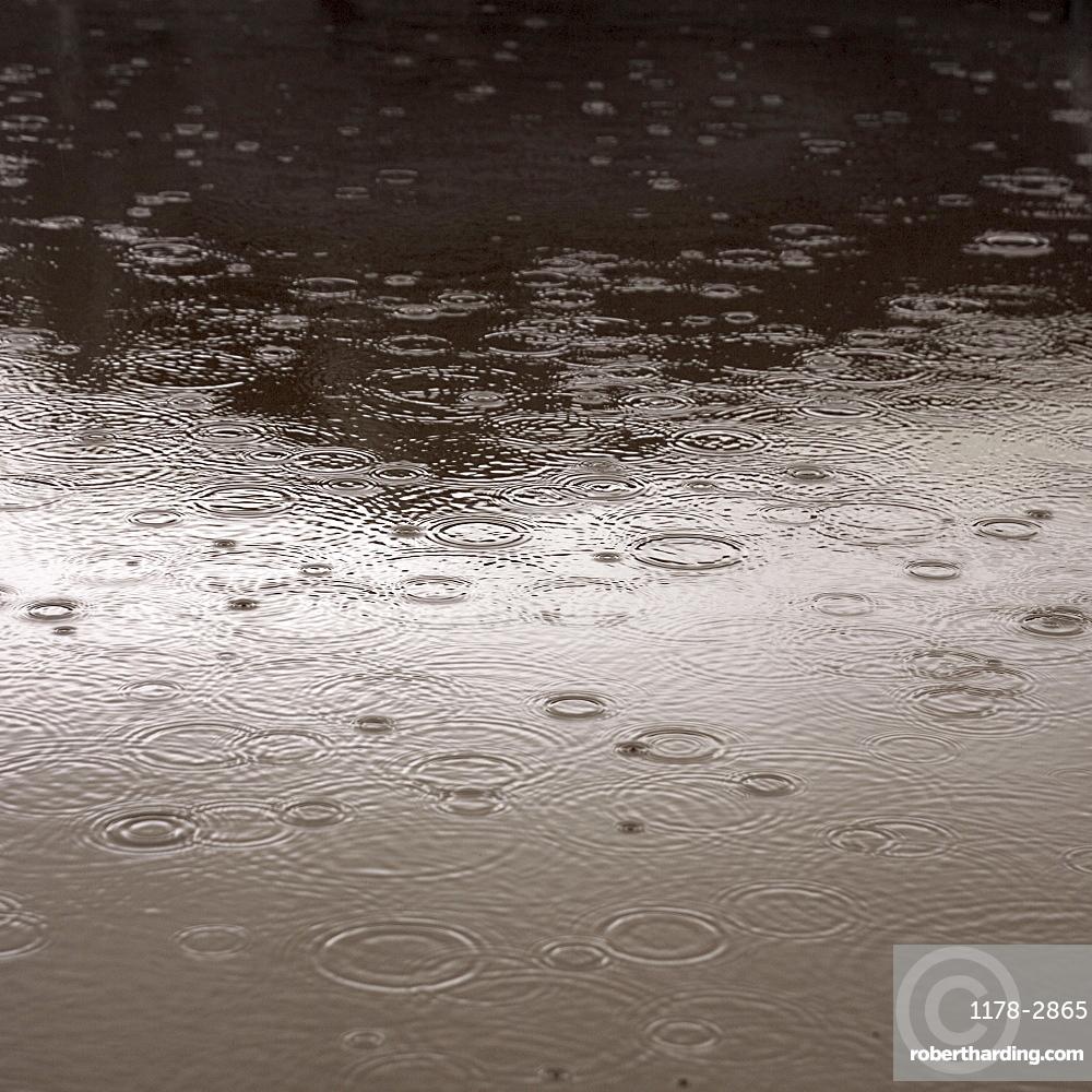 Rain falling on the ground