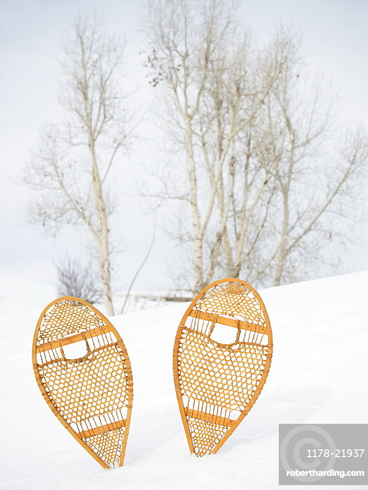 Snow shoes stuck in snow