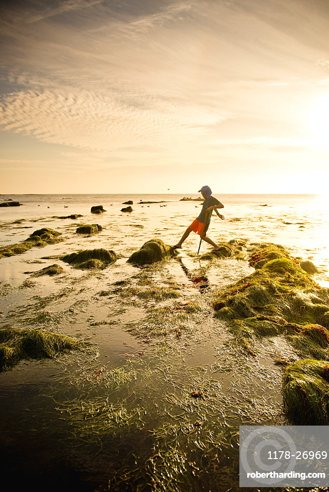Teenage boy exploring tide pools in La Jolla, California