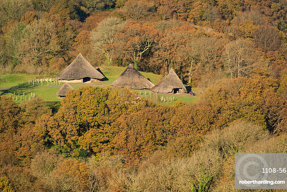 Castell Henllys Iron Age village in the autumn, constructed by the Pembrokeshire Coast National Park, Pembrokeshire, Wales, United Kingdom, Europe