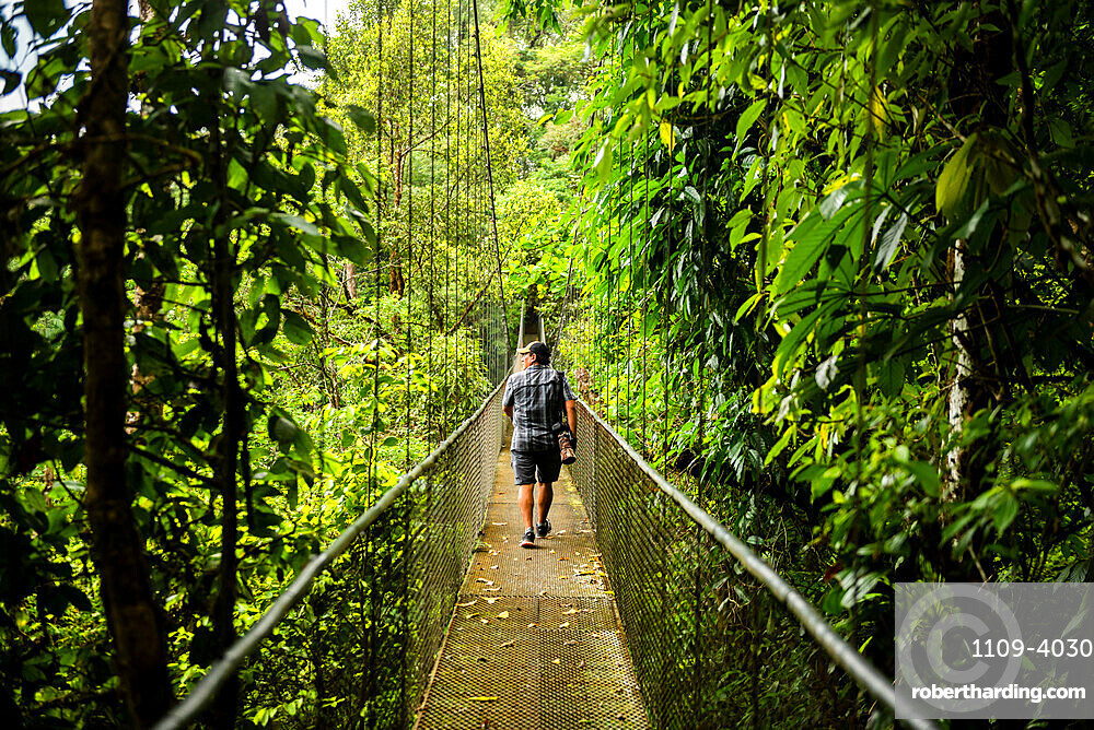 Hanging bridges in cloud forest at San Luis, Alajuela Province, Costa Rica