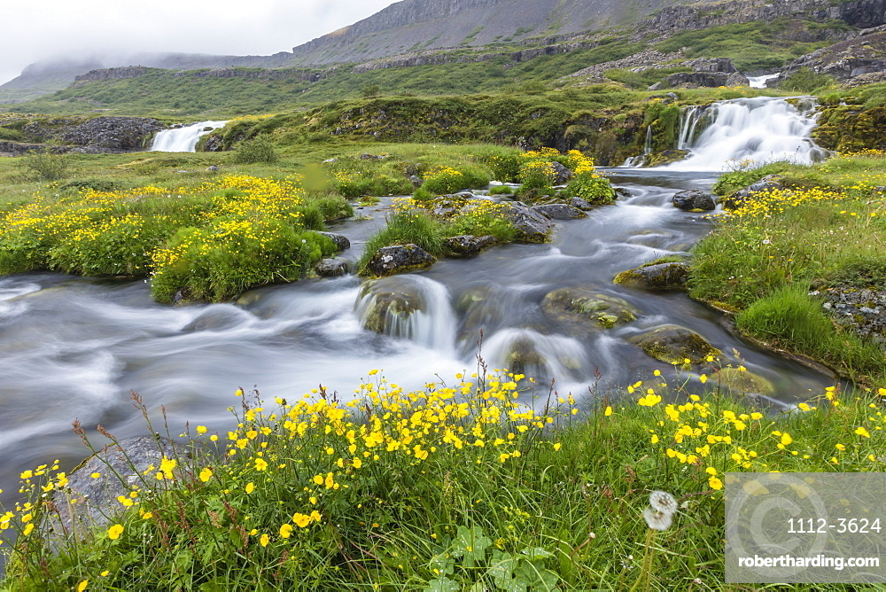 Dynjandi, Fjallfoss, a series of waterfalls located in the Westfjords (Vestfirdir), Iceland, Polar Regions