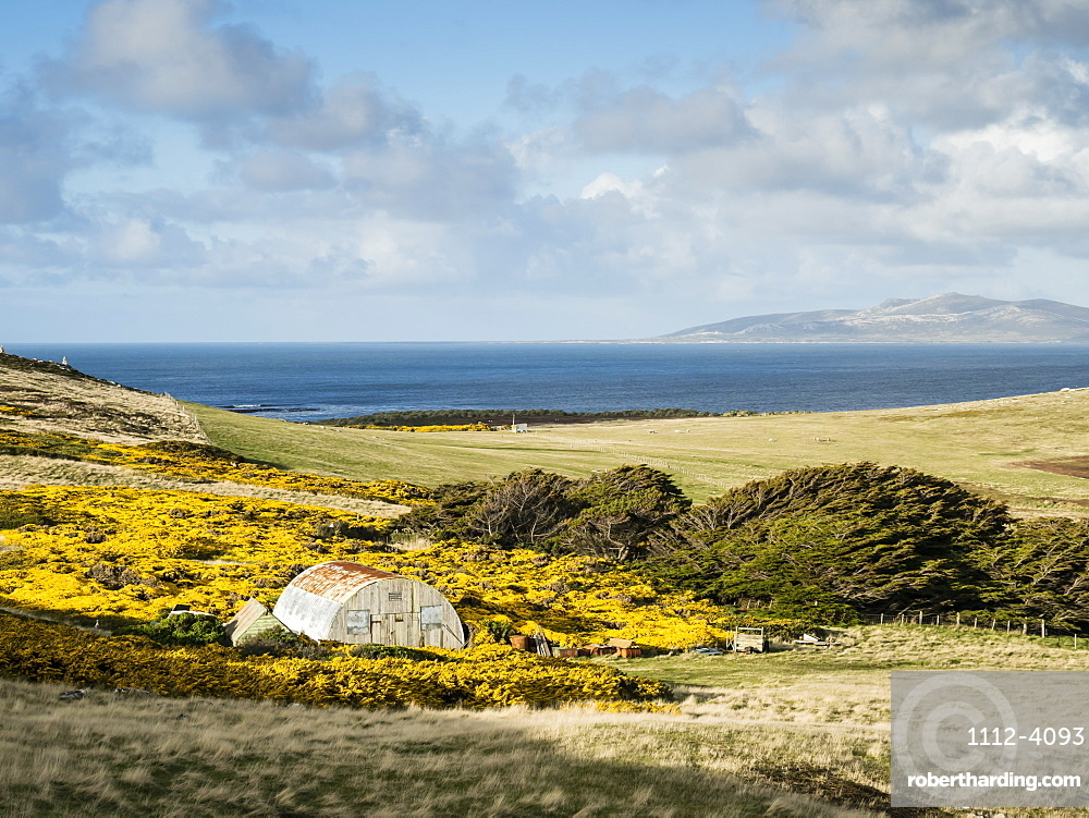 A view of the working sheep farm on West Point Island, Falkland Islands.