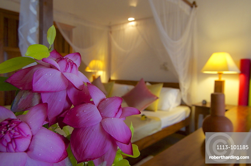 Tropical flowers in a delux room at the Berberyn Ayurveda Beach Resort, Weligama, Mirissa, in the South of Sri Lanka