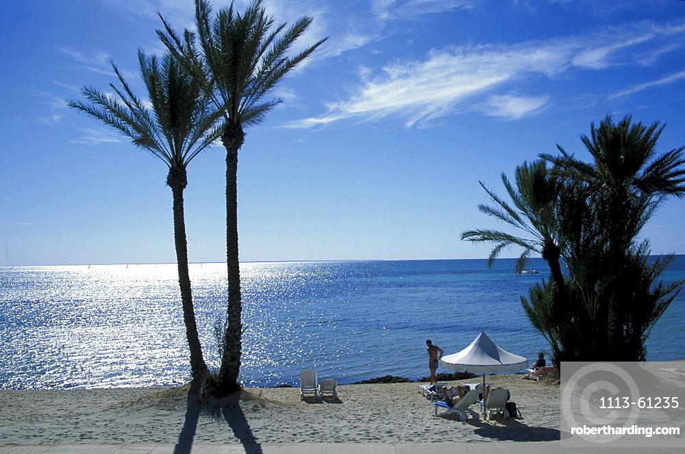 Beach with palms, Djerba, Tunis