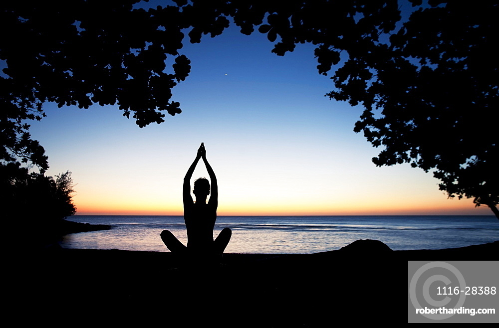Hawaii, Kauai, Woman meditating along ocean at evening, Tree silhouetted.