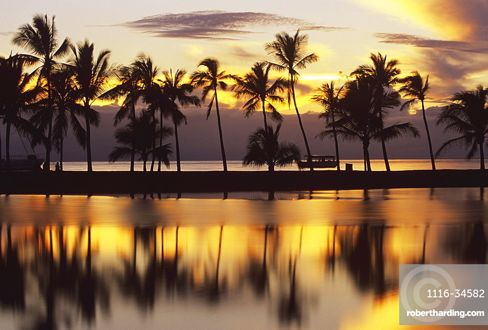 Hawaii, Big Island, South Kohala, Anaeho'omalu Bay, sunset and coconut palms
