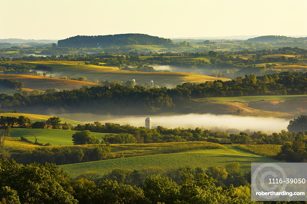 Agriculture - Dairy land at sunrise showing cornfields, alfalfa fields, dairies, silos and fog in low lying areas / Southwest Wisconsin, USA.