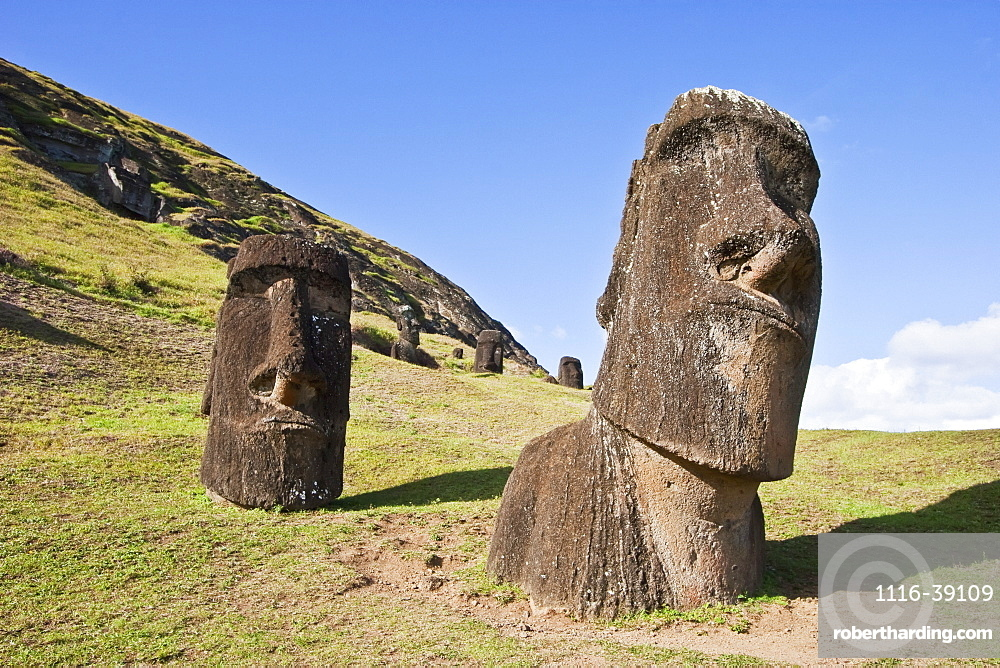 Moais By The Quarry On The Outer Slope Of The Rano Raraku Volcano, Rapa Nui (Easter Island), Chile