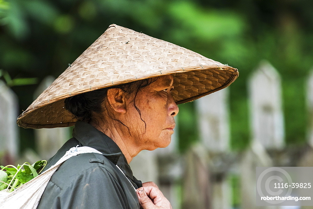 Portrait of the profile of a senior woman wearing a woven conical hat, Elephant Village, Luang Prabang, Laos