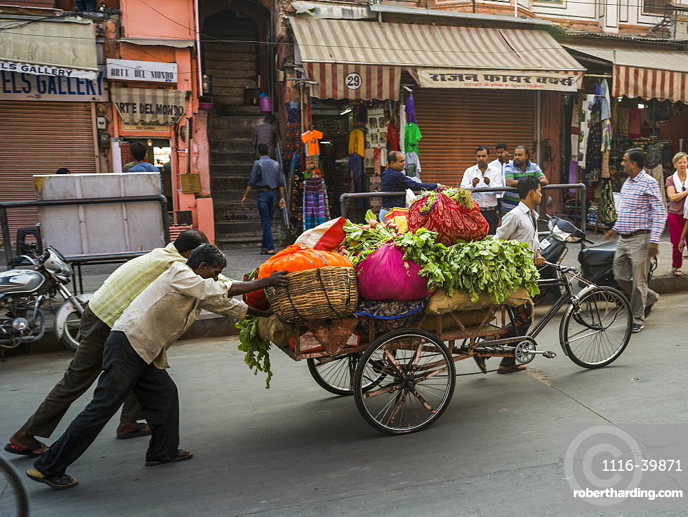 Men push a cart full of fresh produce down the street, Jaipur, Rajasthan, India