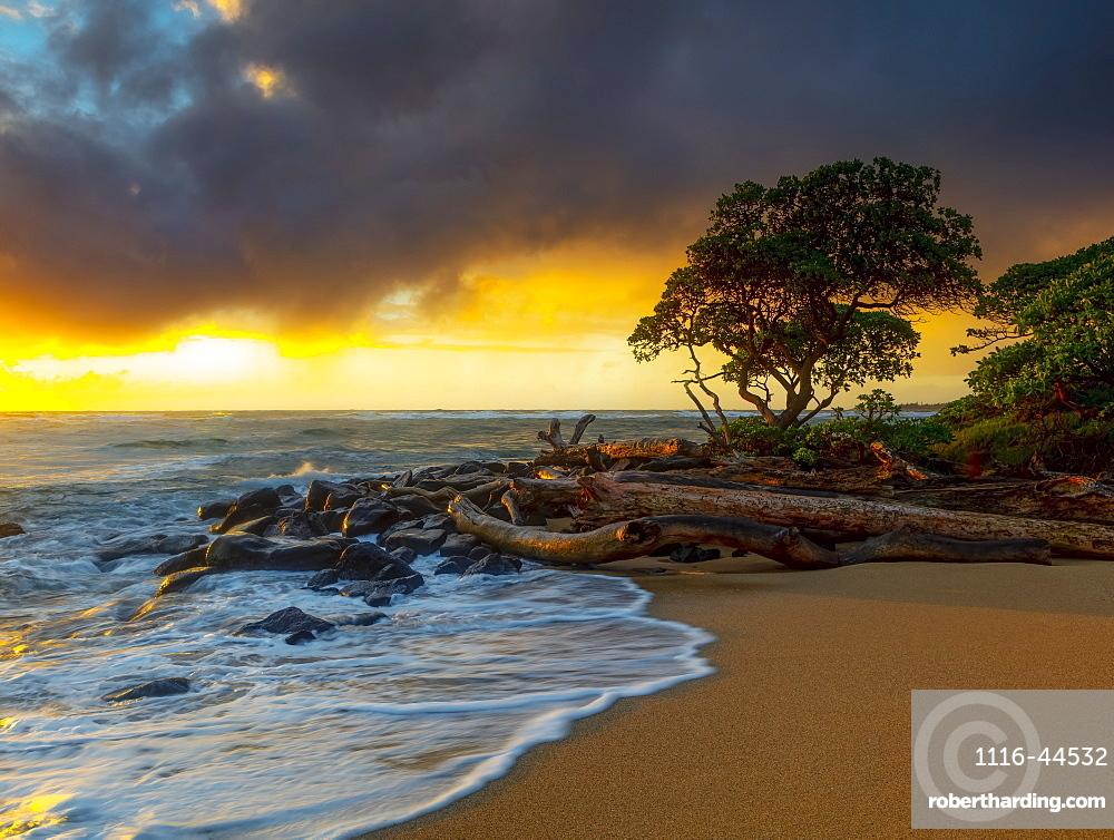 Sunrise over driftwood and rocks on a Hawaiian shore, Kauai, Hawaii, United States of America
