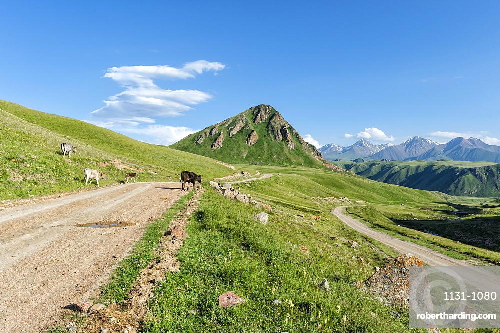 Gravel Road across Naryn gorge, Naryn Region, Kyrgyzstan