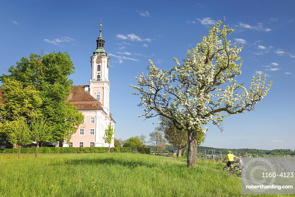 Birnau Pilgrimage Church, Unteruhldingen, Lake Constance, Baden-Wuerttemberg, Germany