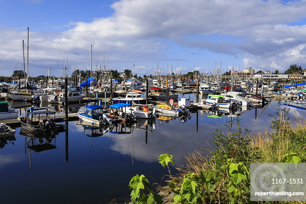 Boat harbour with beautiful reflections and town of Sitka, Baranof Island, Northern Panhandle, Southeast Alaska, USA