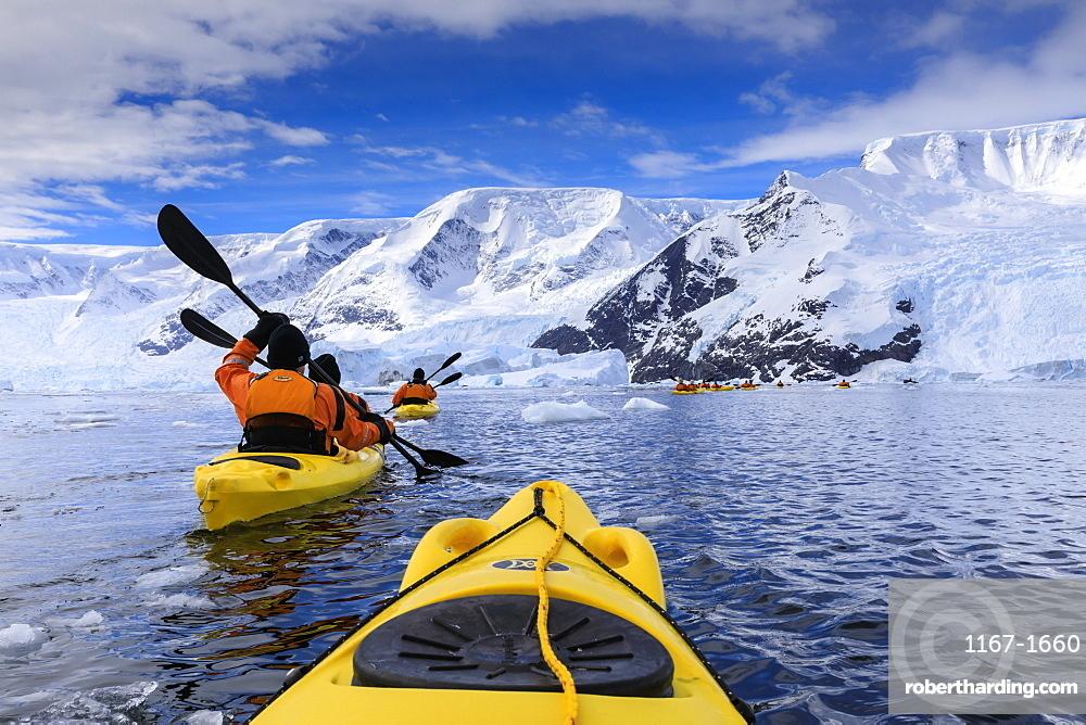Kayaking amongst spectacular icebergs, mountains and glaciers, sunny Neko Harbour, Anvord Bay, Antarctic Peninsula, Antarctica