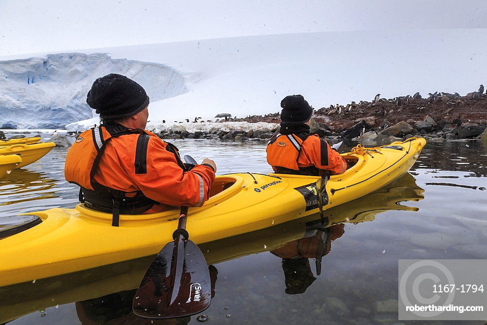 Couple kayaking in the snow, watching a Gentoo penguin colony, Chilean Gonzalez Videla Station, Waterboat Point, Antarctica