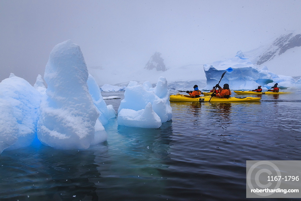 Expedition tourists kayaking in snowy weather, with blue icebergs, Chilean Gonzalez Videla Station, Waterboat Point, Antarctica, Polar Regions
