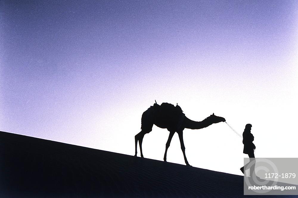 Camel and Owner Walking in Desert