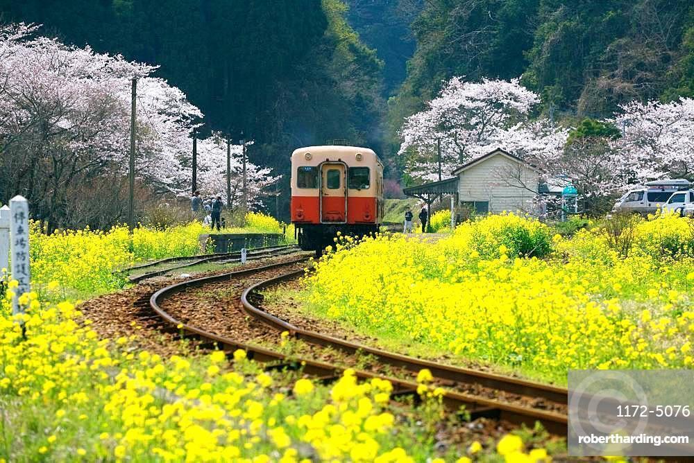 Ichihara City, Chiba Prefecture