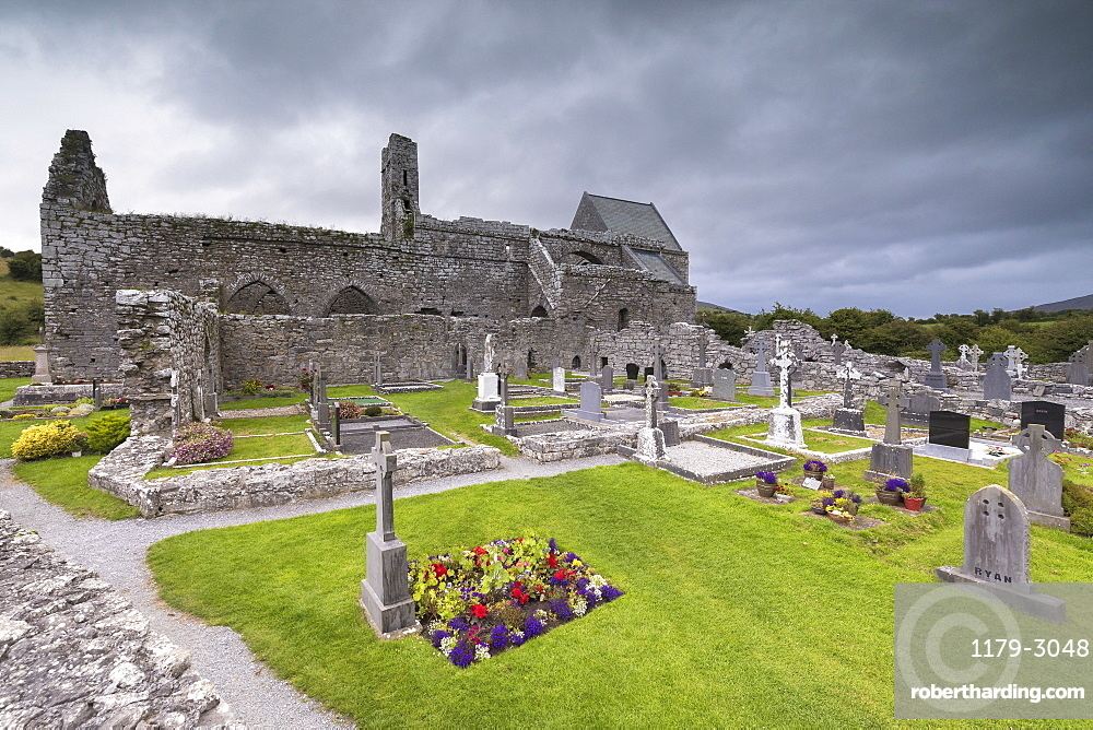 Corcomroe Abbey and churchyard, The Burren, County Clare, Munster, Republic of Ireland, Europe