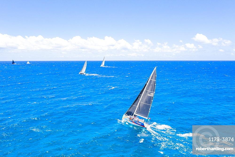 Aerial view of sailing boats during a regatta, Antigua, Caribbean, West Indies, Leeward Islands (drone)
