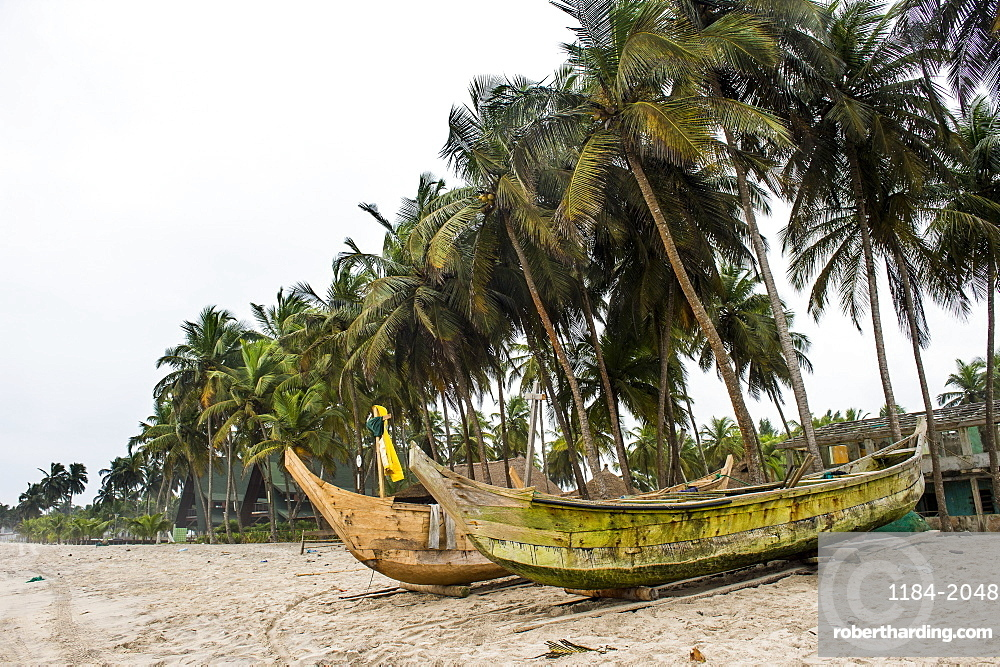 Fishing boats on a palm fringed beach in Assinie, Ivory Coast, West Africa, Africa
