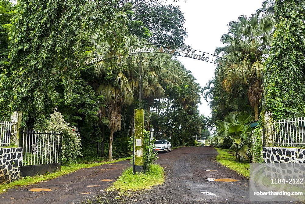 The Botanical Gardens of Limbe, southern Cameroon, Africa