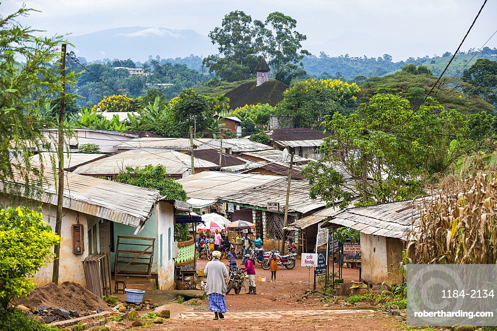 View over the village of Bafut, Cameroon, Africa