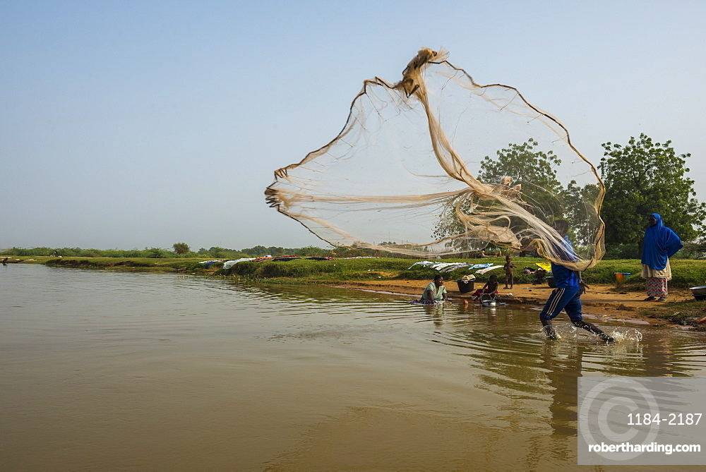 Fisherman throwing his fishing net into the River Niger, Niamey, Niger, Africa