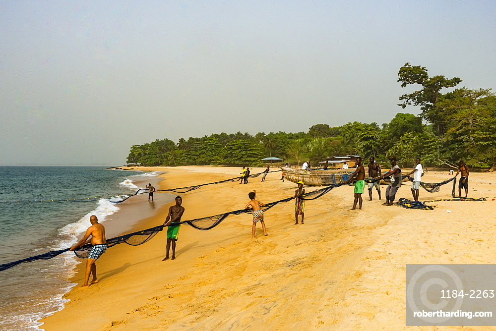 Local fishermen pulling their nets on a beach in Robertsport, Liberia