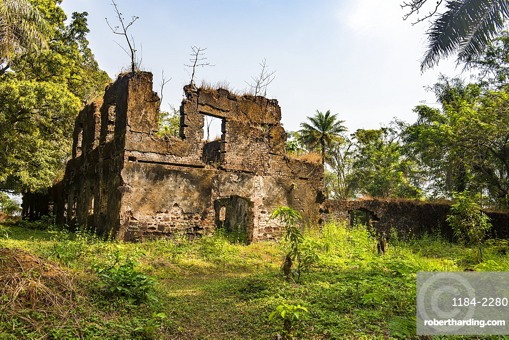 Old ruins of the former slave colony on Bunce island, Sierra Leone, West Africa, Africa