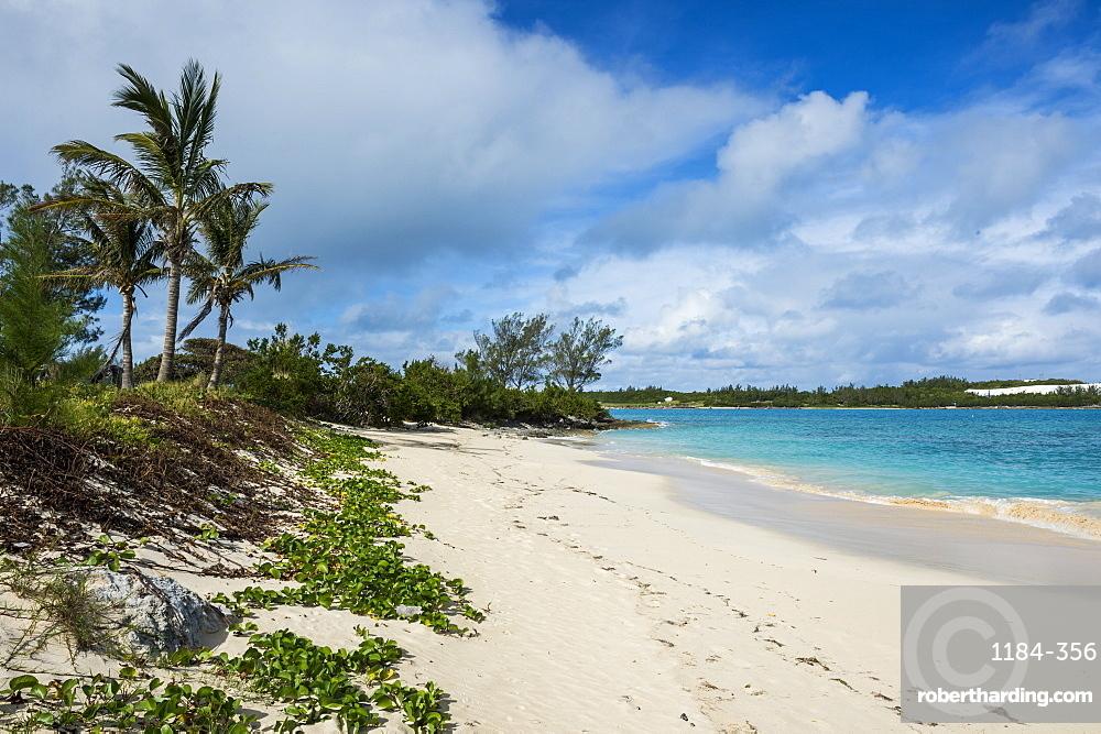 Turtle beach, St. David's island, Bermuda, North America