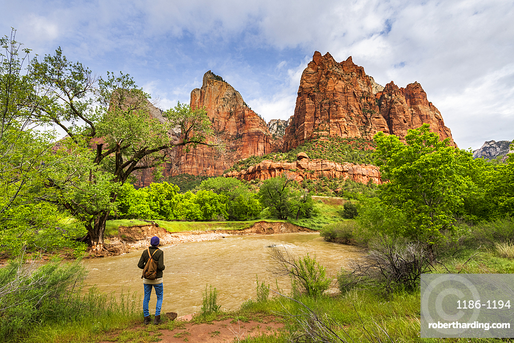 Court of the Patriarchs, Zion National Park, Utah, United States of America, North America