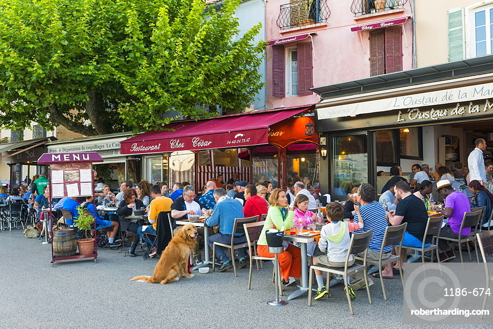 Cafe in Cassis harbour, Cassis, Bouches du Rhone, Provence, Provence-Alpes-Cote d'Azur, France, Europe