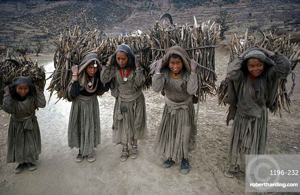 Chhetri girls carry firewood. Humla, north-west nepal