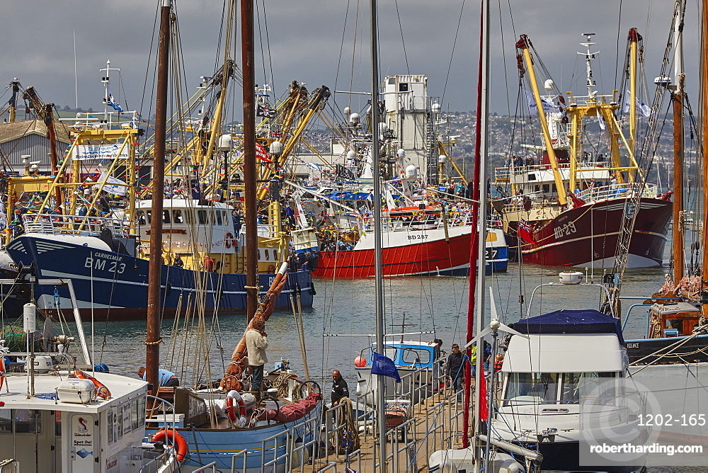Boats tied up in the busy harbour at Brixham, Torbay, Devon, Great Britain.