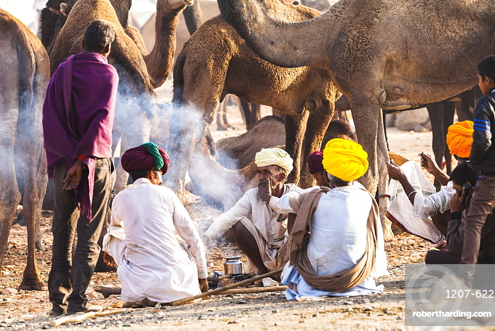 Camel herders at the Pushkar Camel fair, Pushkar, Rajasthan, India, Asia,