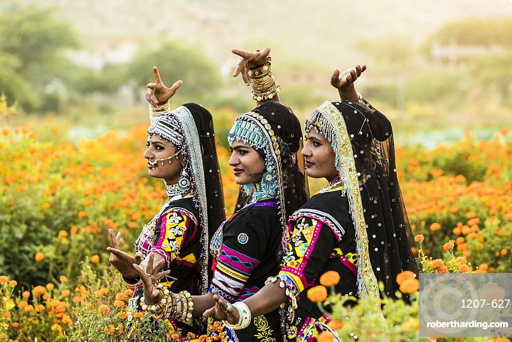 Local dancers in a marigold farm in Pushkar, Rajasthan, India, Asia,