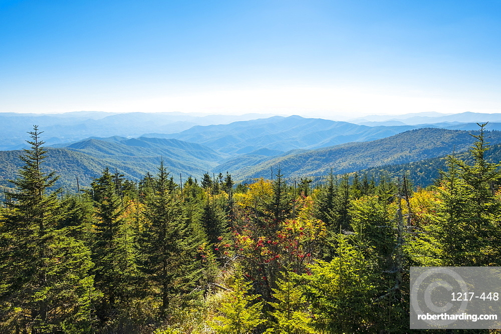 Great Smoky Mountains National Park, Clingmans Dome, border of North Carolina and Tennessee, North Carolina, United States of America, North America