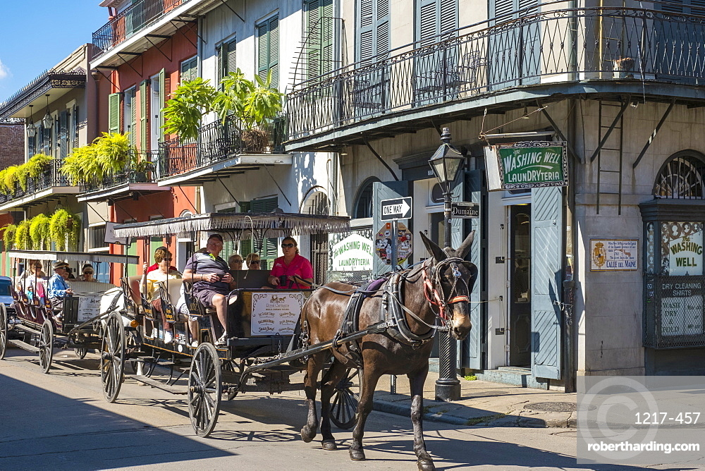 Horse-drawn carriage and buildings on Bourbon Street, French Quarter, New Orleans, Louisiana, United States of America, North America