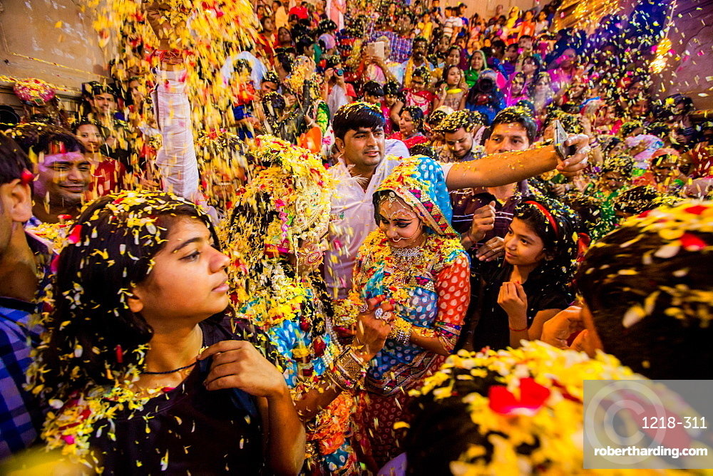 Crowd throwing flower petals during the Flower Holi Festival, Vrindavan, Uttar Pradesh, India, Asia