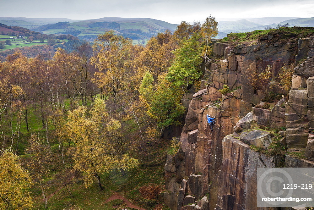 A rock climber ascends a cliff face formed by historic quarrying at Bole hill quarry on an autumn day in the Peak District, Derbyshire, England, United Kingdom, Europe