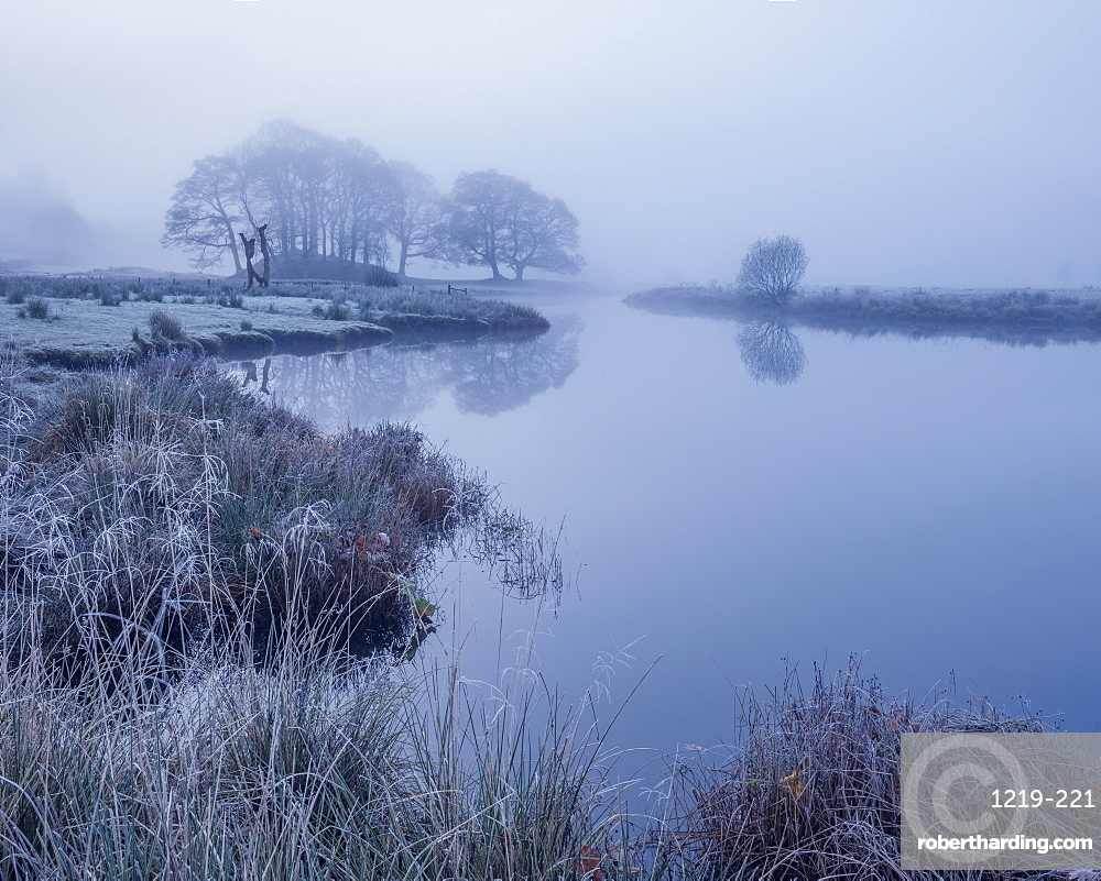 The reeds and trees on the banks of Elterwater are coated in frost on a foggy autumn morning in the Lake District.