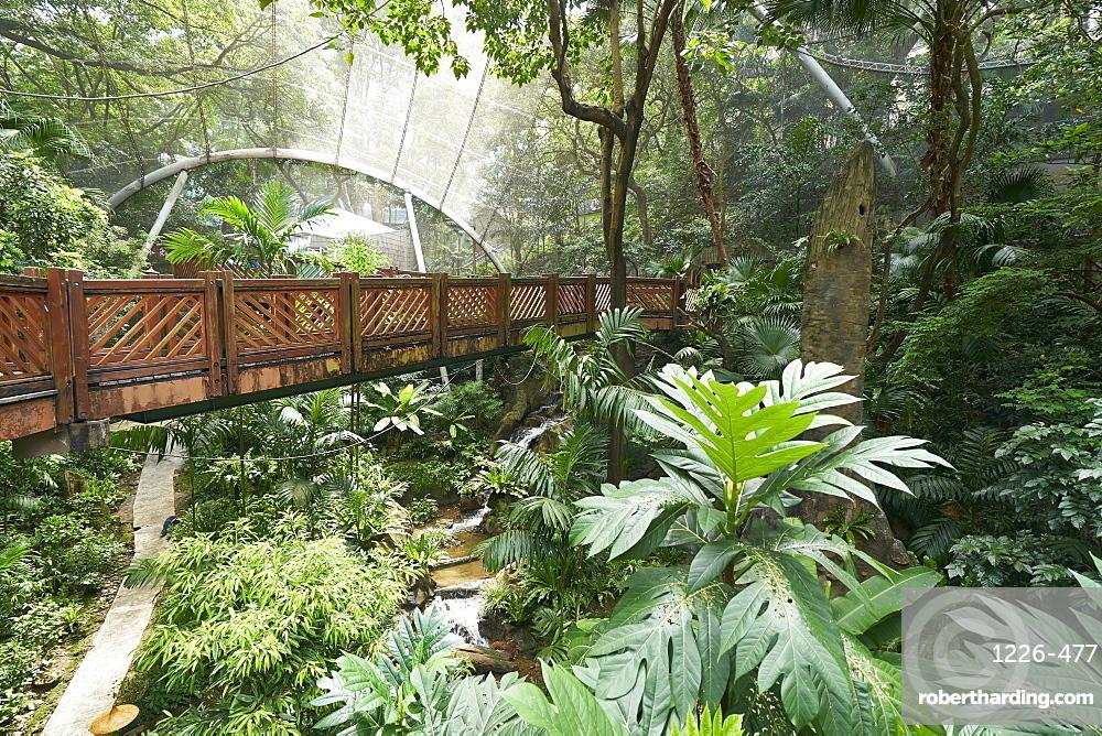 Hong Kong Park Aviary in Central, Hong Kong Island, Hong Kong, China, Asia