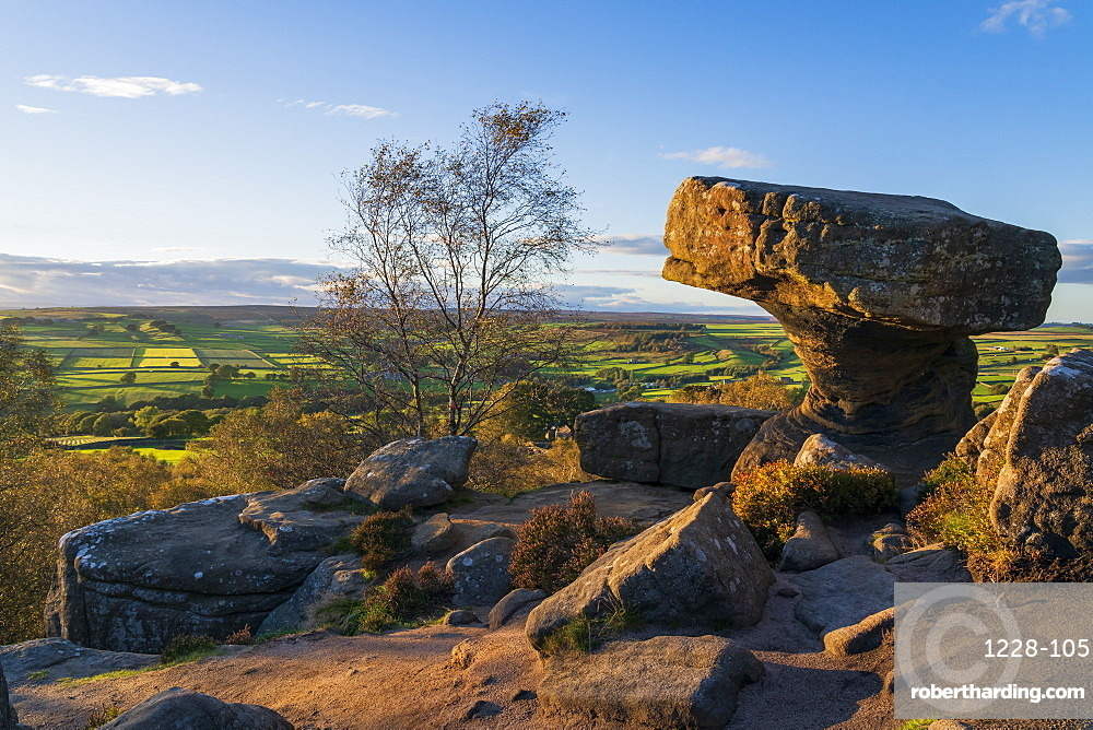 Yordale rocks, Nidderdale near Pateley Bridge, North Yorkshire, UK.