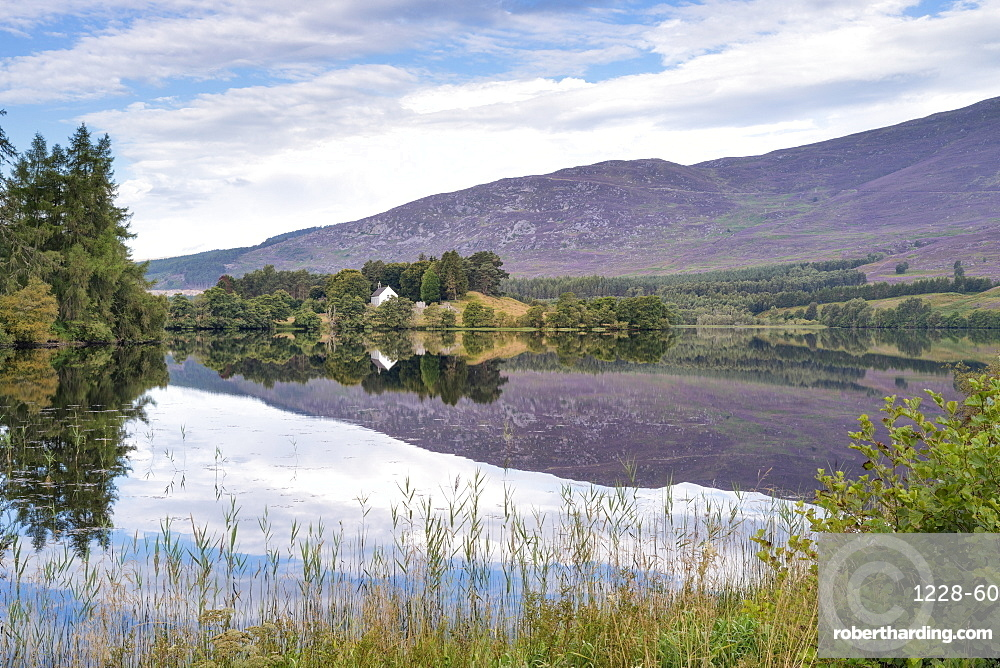 Loch Alvie, Strathspey and Badenoch, Cairngorms, Highland, Scotland, United Kingdom, Europe