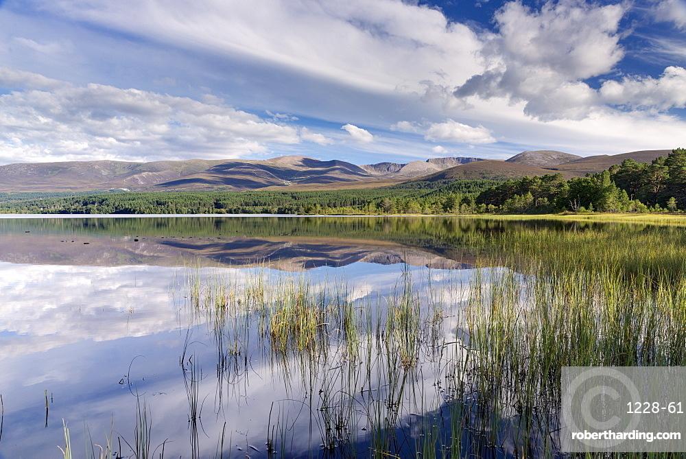 Loch Morlich, Glenmore, Badenoch and Strathspey, Scotland, United Kingdom, Europe