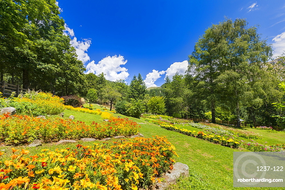 Giardino Botanico Maria Ansaldi Pania di Corfino, Orecchiella National Park, Garfagnana, Tuscany, Italy, Europe