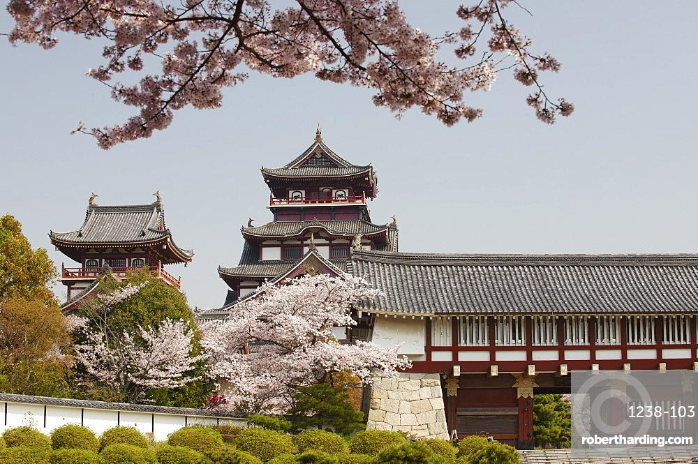 Momoyama castle during cherry blossom season, Kyoto, Japan, Asia